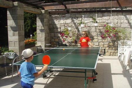 Ubytování Jizerské hory - Penzion v Bedřichově - stolní tenis